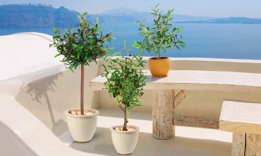 Plante artificielle - Olivier 85cm