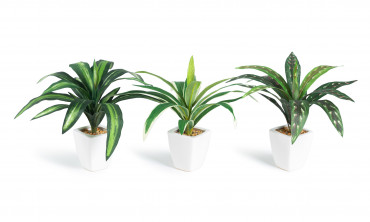 Plante artificielle - Set...