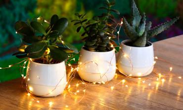 Guirlande solaire jardin micro LED fil cuivré - blanc chaud