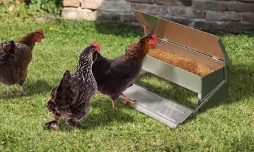Mangeoire à poules 10 Kg