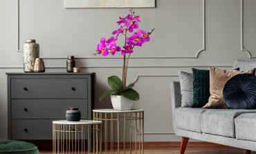 Plante artificielle - Orchidées 60cm